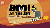 Boo at the Zoo October 21-24, 6-8pm
